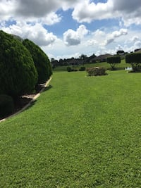 Lawn mowing Belleview