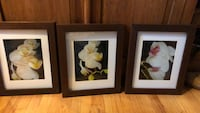 two brown wooden framed painting of flowers Boonton, 07005