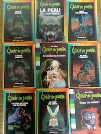 collection de 9 livres chair de poule