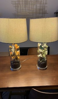 2 Floral Lamps Baltimore, 21223