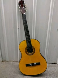 Lark Acoustic Guitar with Hard Case