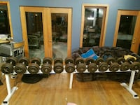 PRO Style Dumbbells Weights