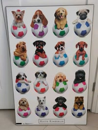 Adorable Puppy Soccer picture Vaughan, L4J 8H6