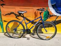 Restored 1993 Raleigh mountain bike Toronto, M6J 3K8