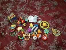 Baby Bug Rattles and Teethers