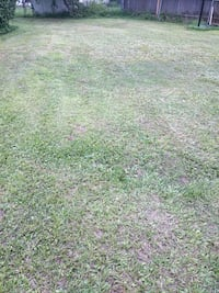 """""""Lawn care""""... Pro-cheap - grass cut and mulch. Jacksonville, 32210"""
