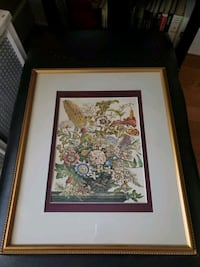 Set of Framed vintage botanical prints