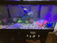 Fish Tank With Stand & Storage Germantown, 20876