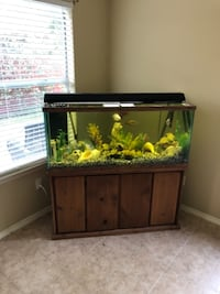 Large Aquarium (with water filtration system) Austin
