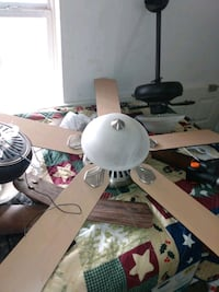 Various fans. Brand new