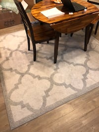 Joss and Main Rug - Excellent Condition Arlington, 22206