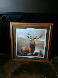 home interior framed stag print