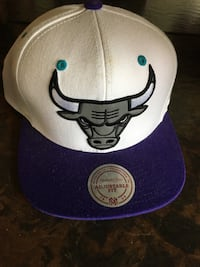 Never worn Chicago bulls grape color way snap back hat Sacramento, 95828