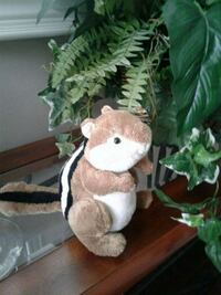 Cute Ty plush squirrel  Kitchener, N2K 4J7