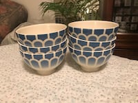 white and blue ceramic bowl Falls Church, 22046