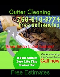 Gutter cleaning Pearl