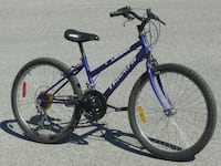 "FEMALE'S YOUTH SIZE 24"" TRIUMPH DASER 15 SPEED MTB ONLY $75.00 FIRM! Mississauga"