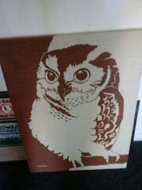 white and brown owl painting St. Louis, 63136