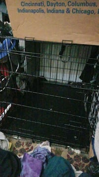 dog crate Alexandria, 22307