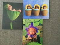 3 Anne Geddes Mounted Canvas Prints Oakville, L6H