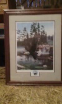 brown eagle painting with brown wooden frame Chuckey, TN 37641, USA
