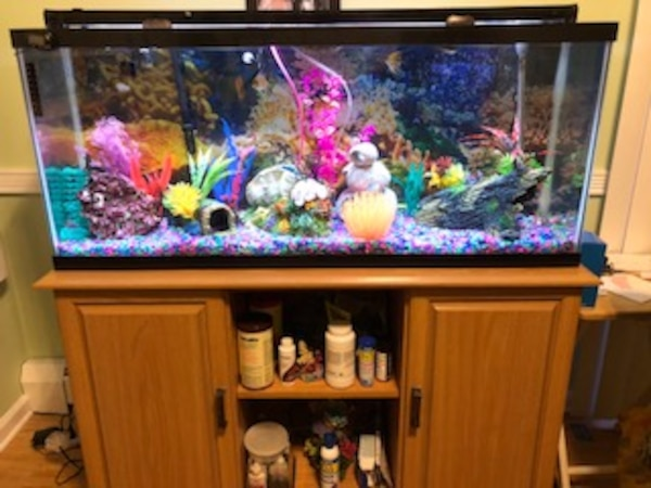 Used 55 Gallon Fish Tank With Stand And Glass Tops Led Light For Sale In Warwick