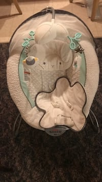 baby's brown and green Fisher-Price bouncer Innisfil, L9S