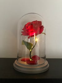 Beauty and the Beast, Enchanted Rose, LightUp Rose, Rose in Glass Dome, Flower Lamp  Paramount, 90723
