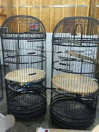 Six foot tall bird cages