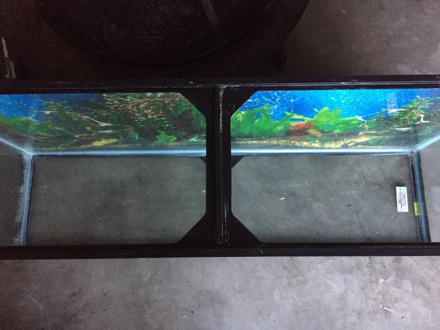 Used 55 gallon fish tank in kissimmee for 55 gallon fish tank lid