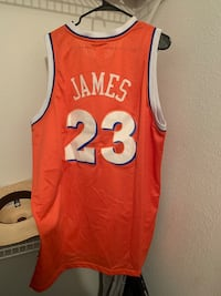Old school lebron James stitched jersey