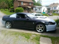 Ford - Mustang - 1999 Butler, 16001