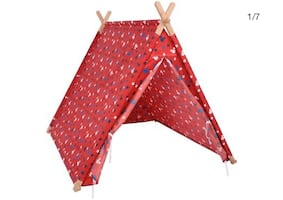 Mickey Mouse Tent