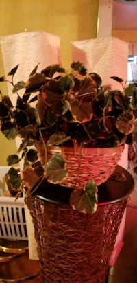 2 Hanging Artificial Leaf Baskets   Suitland-Silver Hill