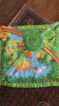 green, blue, and orange Fisher-Price activity gym