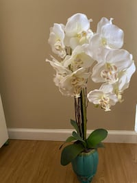 Orchid flower home decor