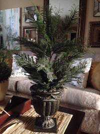 """Faux topiary tree that looks like real, 28""""h excellent condition . Brossard, J4Y 2Z6"""