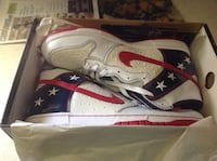 Nike Dunk sneakers US size 11 brand new in box evil Knievel edition Danbury, 06811