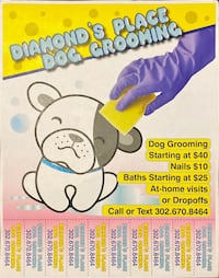 Dog grooming Dover