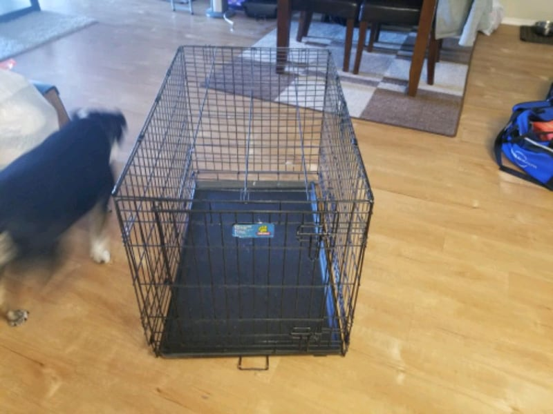 Dog Kennel.  4