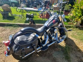 Black Friday Special 00 harley davidson softail