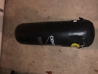 Century punching bag with chain