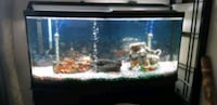 100 gal fish tank with stand Mission, V2V 1Z8
