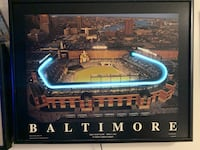 Baltimore Orioles Stadium neon light and picture amazing one of a kind Owings Mills, 21117