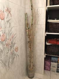 Tall glass vase, tree barks and twigs  included Toronto, M3L 1M4