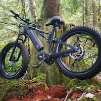 worlds most powerful electric mountain bike Surrey, V4N 2E4
