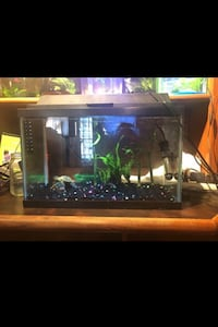 10 gallon aquarium with heater, filter, hood lamp and decor