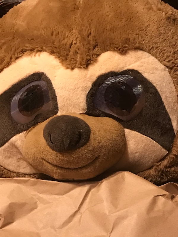$10 JUST IN TIME FOR EASTER ADULT EASTER RACCOON MASK!!!!