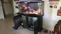 Black framed clear glass fish tank Westminster, 21157