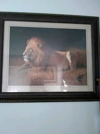 brown lion painting with black wooden frame Rock Hill